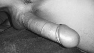 Wild Hard Cock855